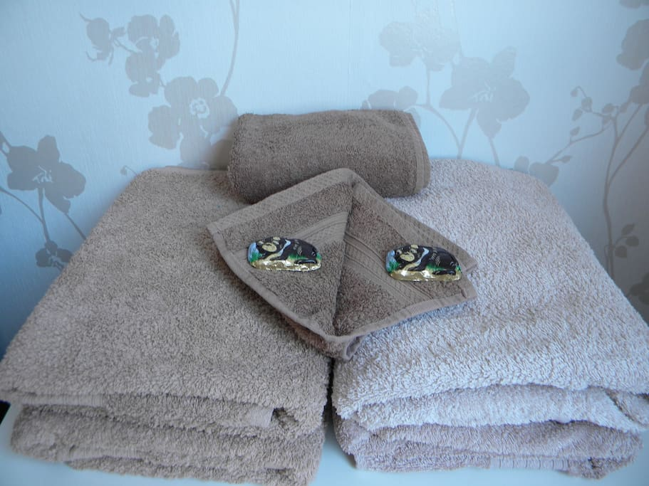 Lush towels and treats