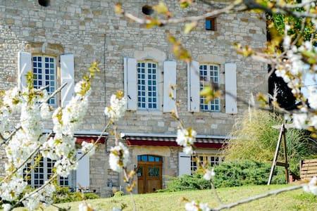 Les Anglades - ROOM - SAPHIRE BLEU - Castelnau-de-Montmiral