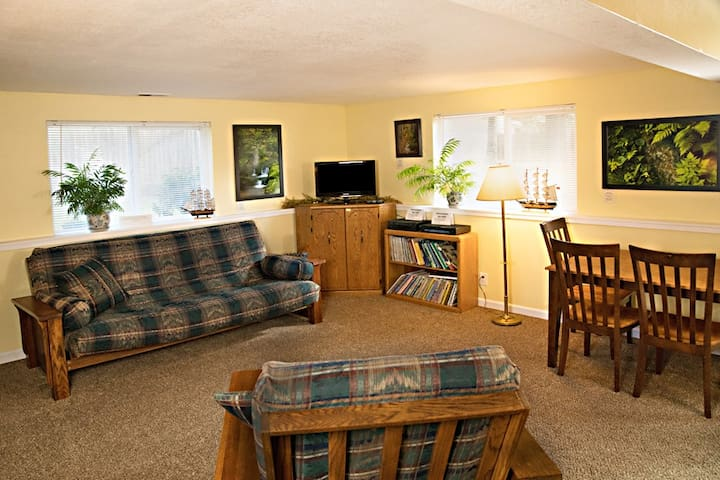 Queen-sized couch/futon, TV, DVD's, Videos, Books & Games.