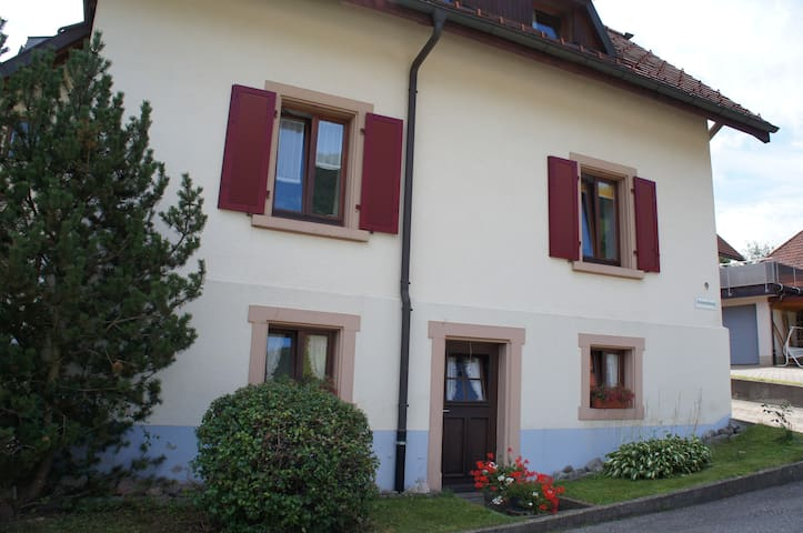 Cozy Flat in the Black forest - Todtnau - Apartment