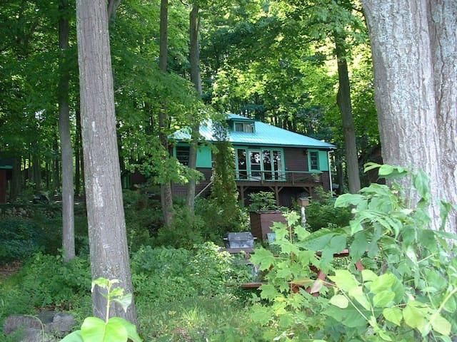 The Forest Cottage - Penetanguishene - Kisház