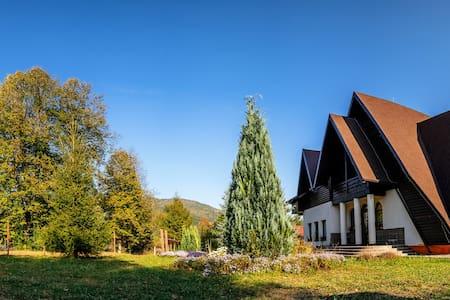 Pensiunea Floarea Bucovinei