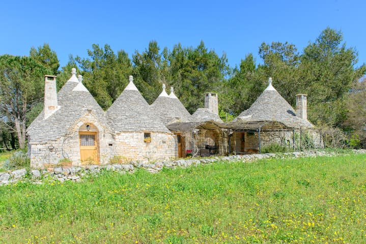 Trullo nel Bosco - Valle d'Itria - Cisternino  - House