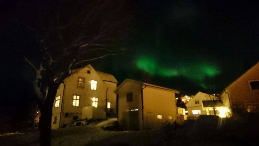 The beautyfull Northern Light - Aurora  Borealis- above our house