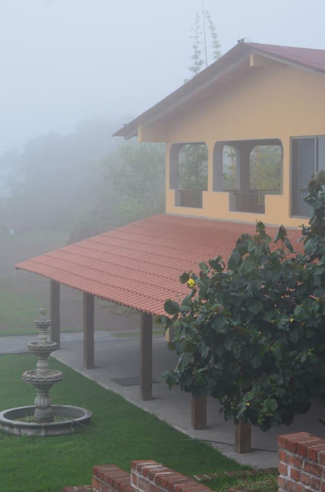 Neblina para ti
