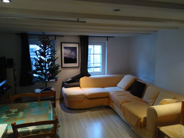 Duplex avec canapé de charme, Metz Centre - Metz - Apartamento