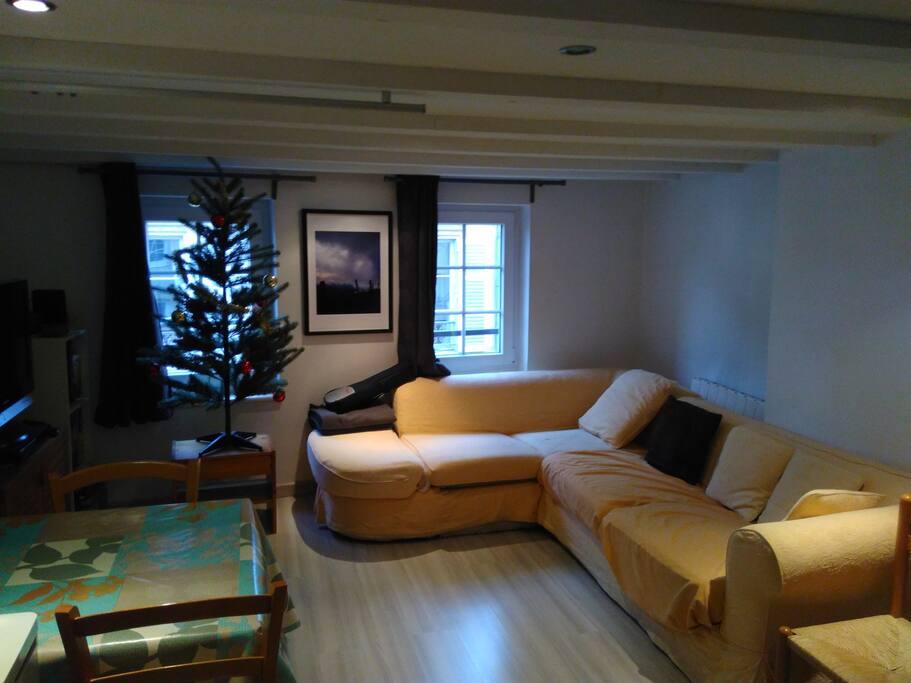 duplex avec canap de charme metz centre appartements. Black Bedroom Furniture Sets. Home Design Ideas