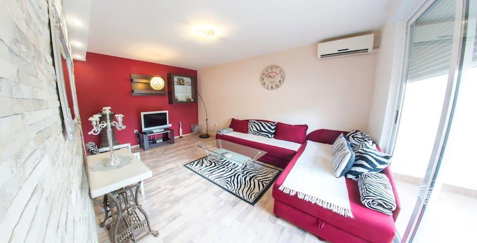 Studio Apartment Zebra