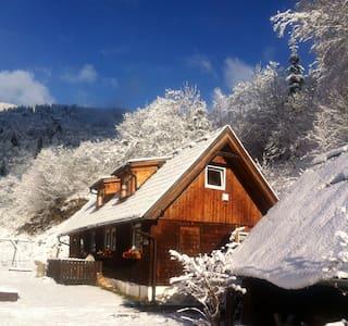 Riverside Retreat. Ski chalet - Ramingstein - Faház
