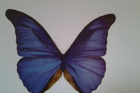 Chambre d'hôte papillon bleu - Bed & Breakfast
