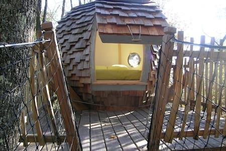 Lov Nid, cabane dans les arbres