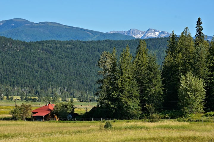 Cabins with mtn. view, meals, tours