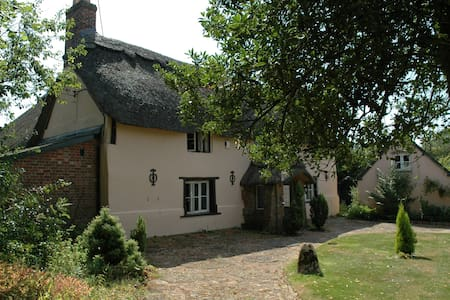 Superb thatched cottage, Dorset - Dorset