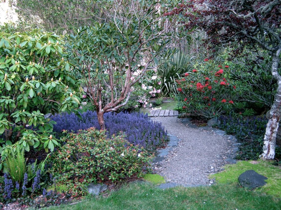The path through the Rhododendrons to the secluded hot tub