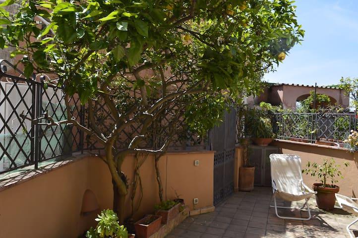 Cozy Apartment in Massa Lubrense - Massa Lubrense