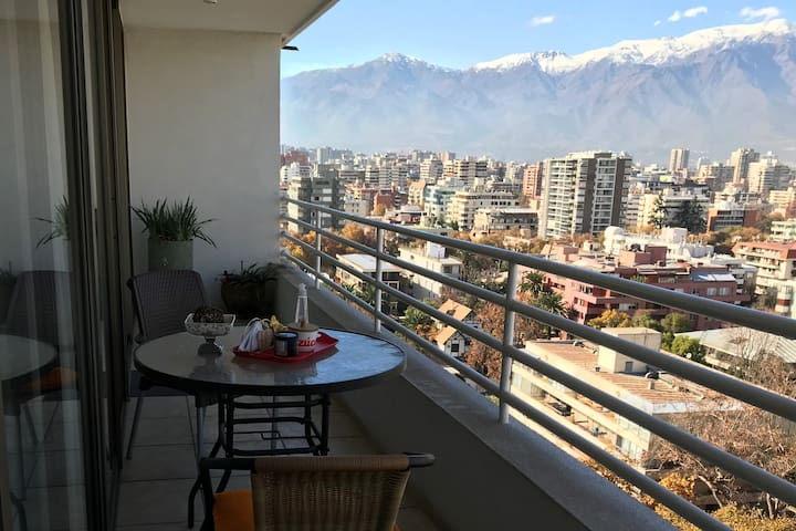 Enjoyable apt. with stunning views of the Andes!
