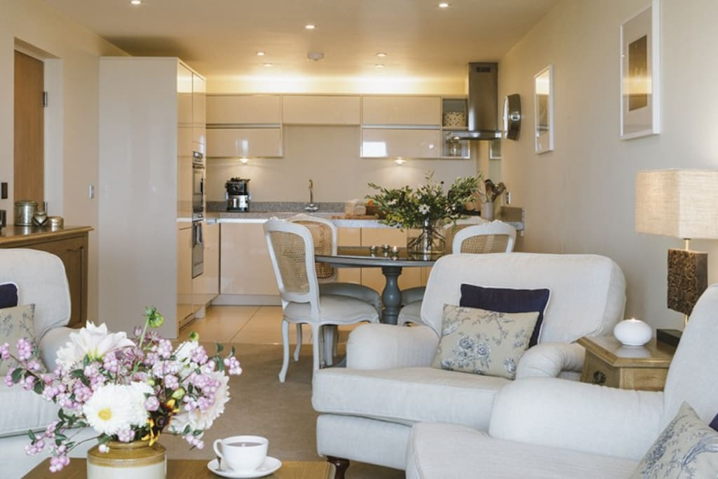 Open plan kitchen, living and dinning area with garden