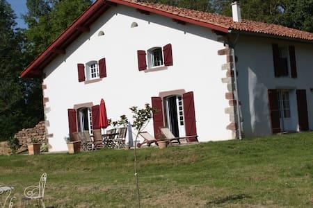Ferme Basque 18ème restaurée 20pers - Saint-Jean-le-Vieux - วิลล่า