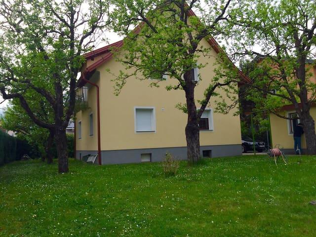 Wohnung in einem Zweifamilienhaus - Klagenfurt am Wörthersee - Flat
