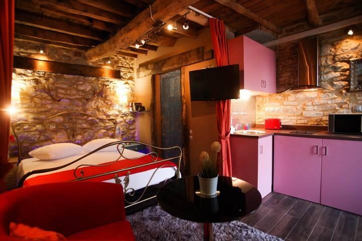 Antique Luxury Groundfloor Suite