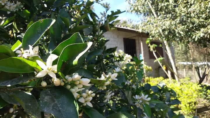 Sítio Iracema - casa de campo