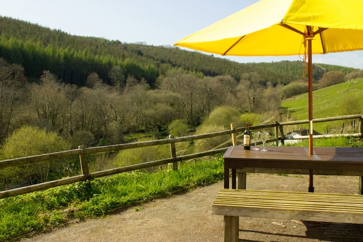 Rural peace 2 miles from beach! *Lambing in March* - Looe - Casa
