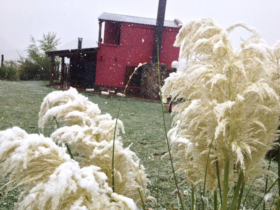 Día de nevisca vista desde el jardín de la cabaña