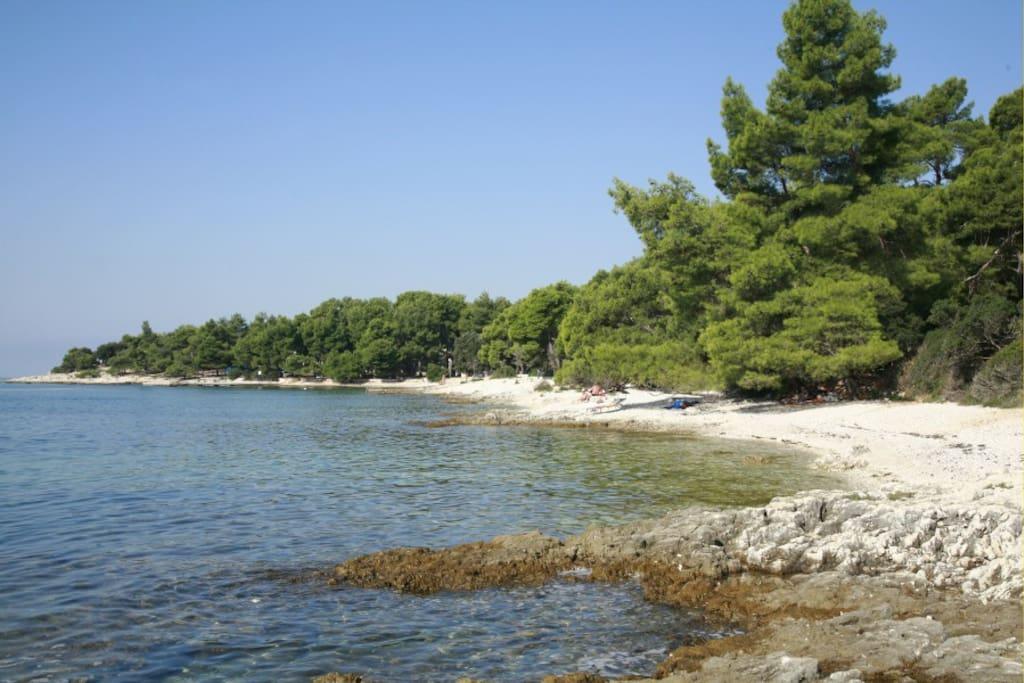 beach near the house