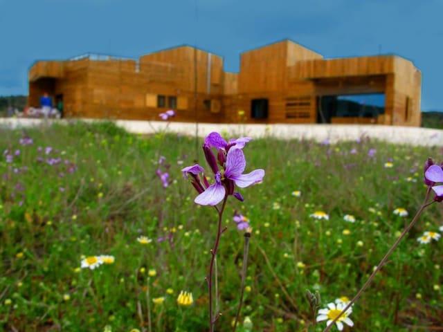 Casa de diseño en entorno rural - Bullas