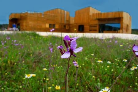 Casa de diseño en entorno rural - Bullas - Talo