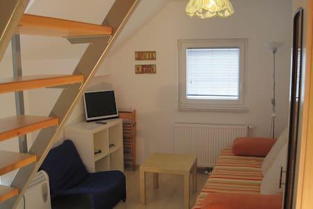 Green Apartment - former hayloft - ブレッド - アパート