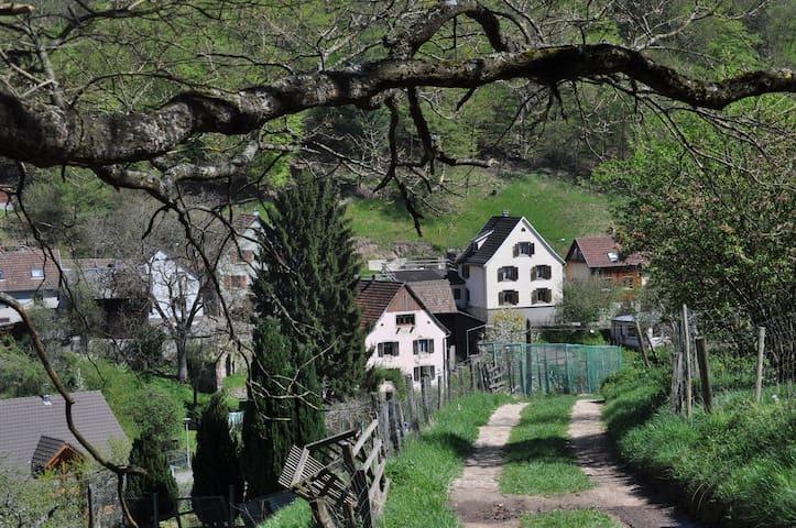 Gîte dans petit village tranquille - Eschbach-au-Val - Apartament