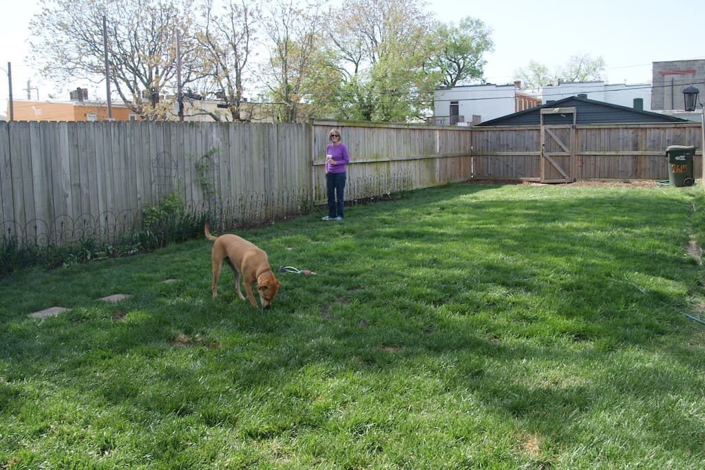 Huge back yard that is quite rare for city living.  That's my mom and our other dog, Pippen