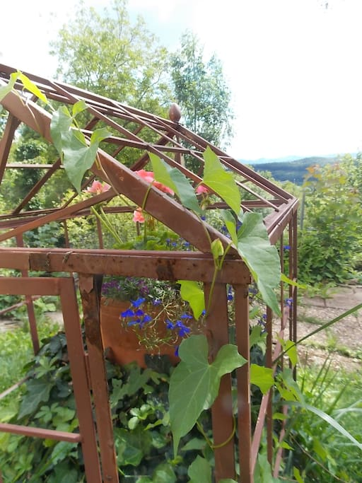 Garden and view on the Albs