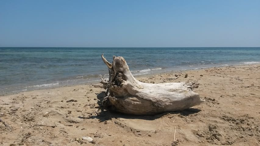 Podere Santa Barbara - Lecce - Departamento