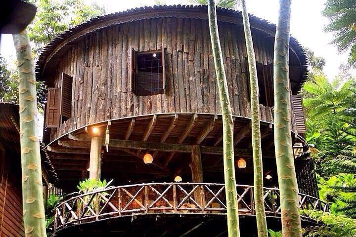 Fig Tree Hill Resort x Cempaka  @  Bayan Lepas
