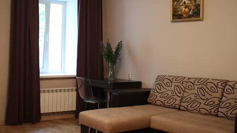 Large 2-roomed flat in the centre