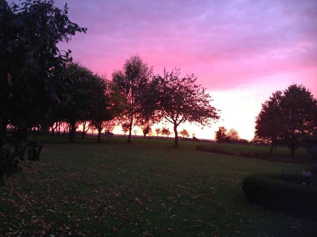 Amazing nightly sunsets, rear field.