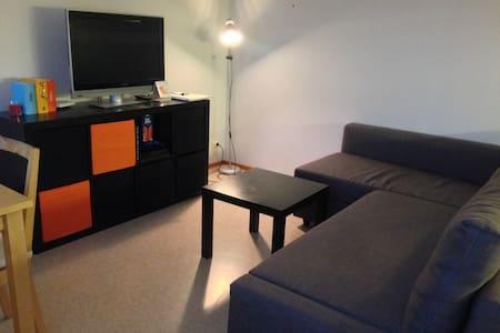 Lovely and cozy apartment - Jyväskylä