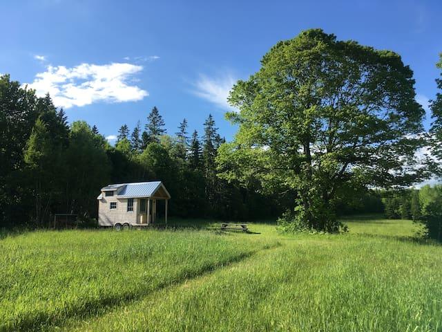 Secluded Tiny House on Christmas Tree Farm