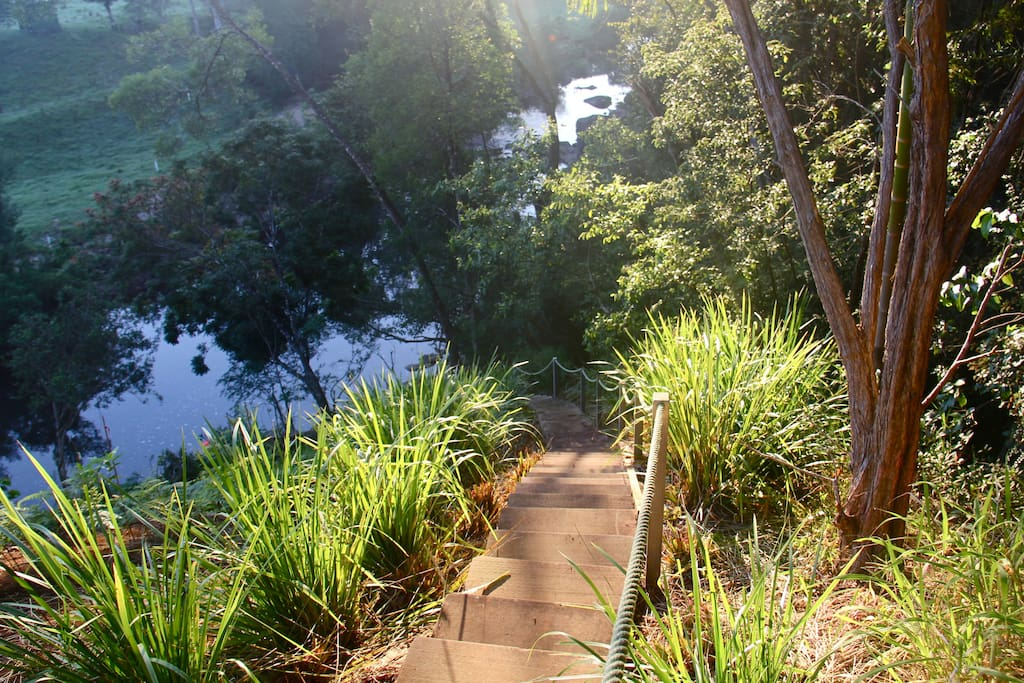 Stairs to the creek. Descend quietly to see platypus and sun baking turtles.