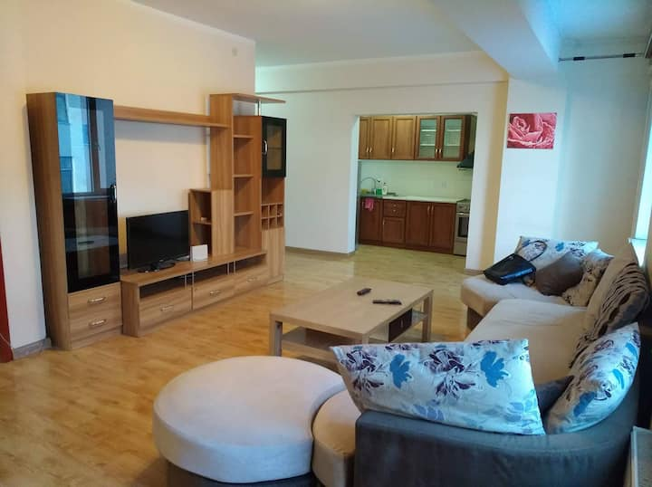 Spacious 1 bedroom private condo in downtown area