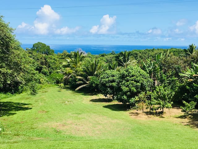 "Hana Nautilus ""New Listing"" Ocean view and private"