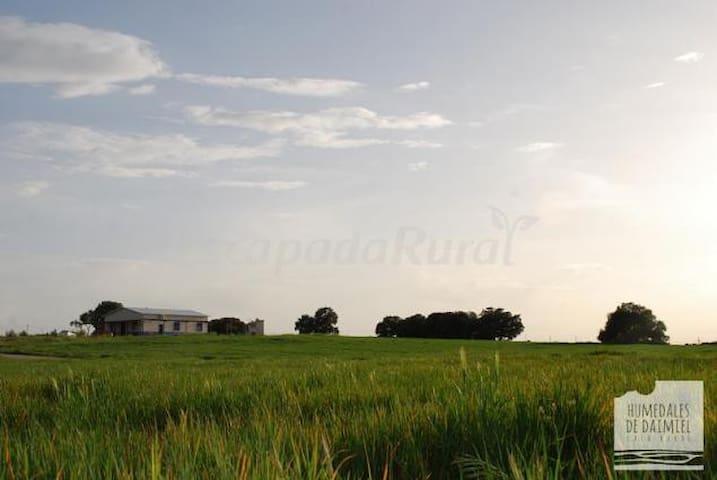 Lujosa Casa Rural - Daimiel - Chalet