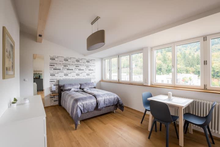 Panorama-Apartment (2) im stilvollen Altbau