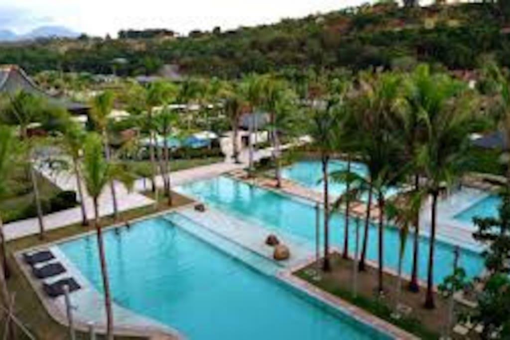 Top View Club Pool