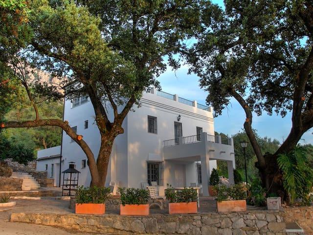 Villa Los 20 Pilares