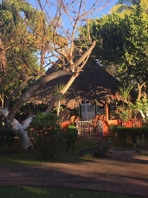 Enjoy freshly squeezed juice or a tropical cocktail in the Rancho