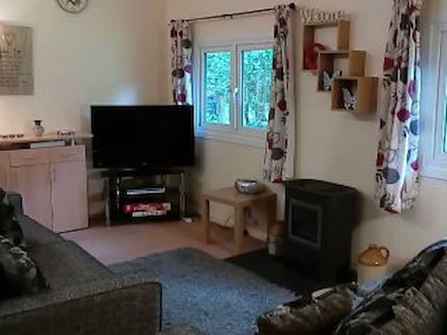 Torwood 2 lodge - Cenarth