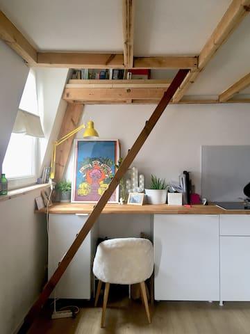 Appartement avec mezzanine plein centre de Lille